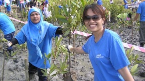 Planting for Future - Mangrove Forest Conservation Program