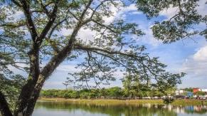 Kulim Lake Garden