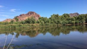 Intel has a long-standing commitment to environmental sustainability. Most recently, we funded several community-based projects in partnership with local nonprofits to restore water back to the local watershed – like this one in Tonto National Forest, which supports the Salt River Basin.