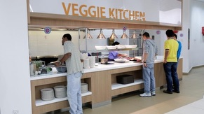 PG7 Viggie Kitchen