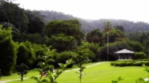Penang Botanical Garden