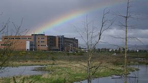 Ronler Acres is surrounded by both natural and man-made wetlands, which help control floodwater, filter storm water, and provide a natural habitat for plants and animals. The wetlands at Ronler Acres flow to Dawson Creek, a tributary of the Tualatin River.